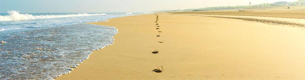 Bloemendaal-zet-stappen-Banner-strand